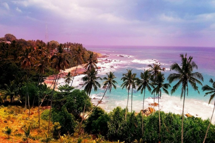 Кого пустят на Шри Ланку?