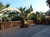 Кипр Nelia Beach 3*