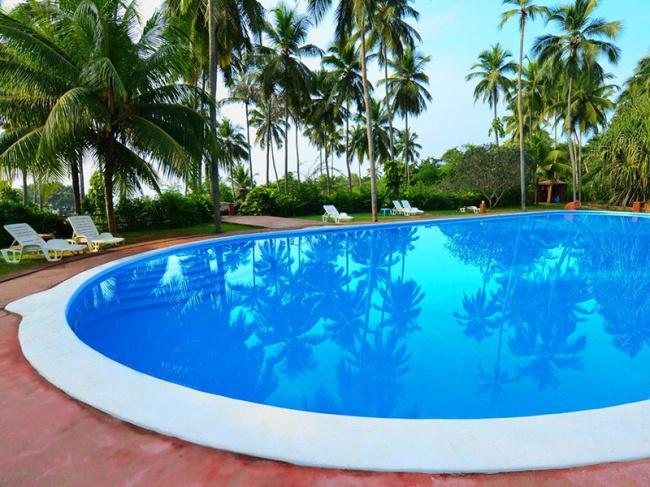 Шри Ланка Eva Lanka Hotel 3* фото №3