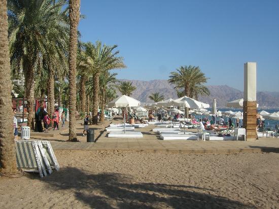 Израиль La Playa Eilat Hotel  4*