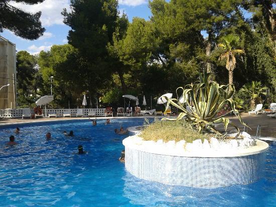 Испания Best Mediterraneo 3* фото №1