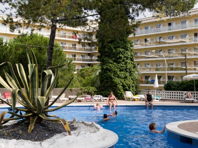 Испания Best Mediterraneo 3* фото №3