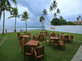 Шри Ланка Citrus Hikkaduwa 4* фото №1