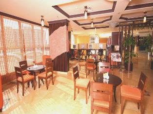 ОАЭ Al Bustan Hotels Flats 4* фото №3