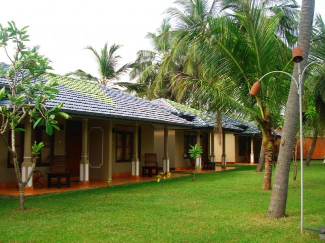 Шри Ланка Carolina Beach Resort & Spa 3* фото №3