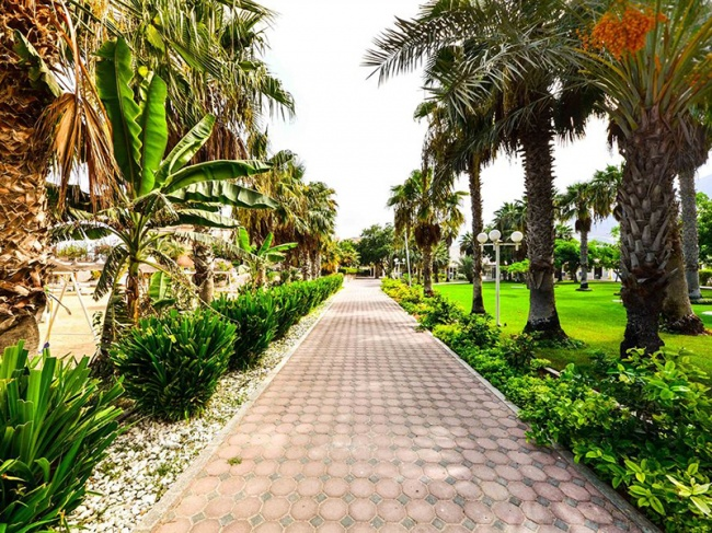 ОАЭ Sandy Beach Hotel & Resort 3* фото №2