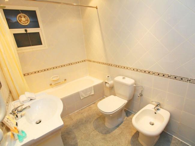 ОАЭ Al Seef Hotel 3* фото №4