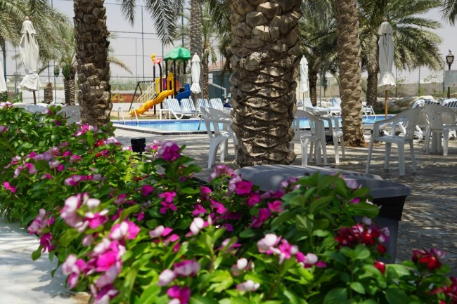 ОАЭ Royal Residence Hotel 3* фото №1