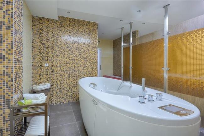 Чехия Iris SPA Hotel 4* фото №2