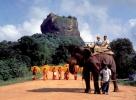 Тур Великолепная Шри  Ланка + отдых на побережье