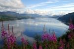 Ирландия – страна кельтов