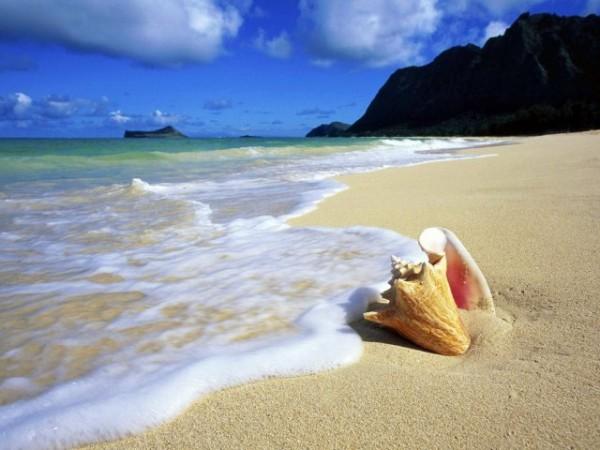 Туры на Шри Ланку: экскурсии 4 дня + отдых на океане