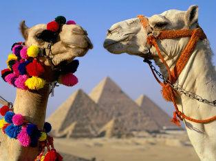 Египет Отдых на курорте Мерса Матрух в Египте!