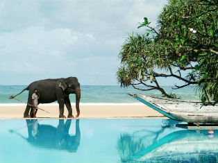 Шри Ланка Новый Год на Шри Ланке