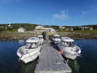 Норвегия Морская рыбалка в Норвегии