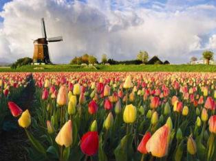 Нидерланды Жемчужины Бенилюкса