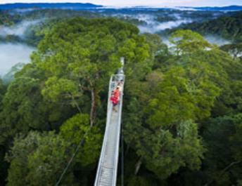 Борнео: Долина Данум + водопады