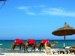 Тунис Тунис на Новый Год