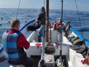 Норвегия Профессиональная морская рыбалка на острове Сутра