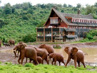 Из Найроби в Момбасу через озеро Найваша