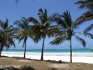 Кения: Магия дикой природы с отдыхом на пляже Индийского океана