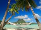Держи курс на Мадагаскар и Маврикий