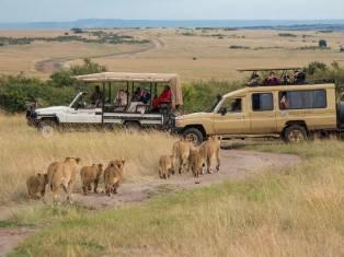 Кения + Танзания: гранд сафари 2020