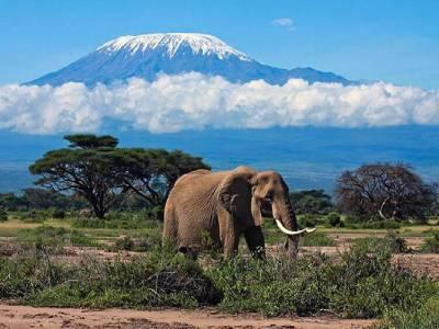 Восхождение на Килиманджаро - маршрут Ронгаи
