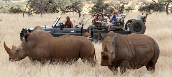 Кения Национальные парки: озеро Найваша, озеро Накуру Масаи Мара