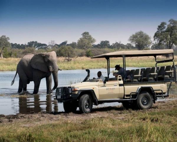Экспресс тур по Южной Африке