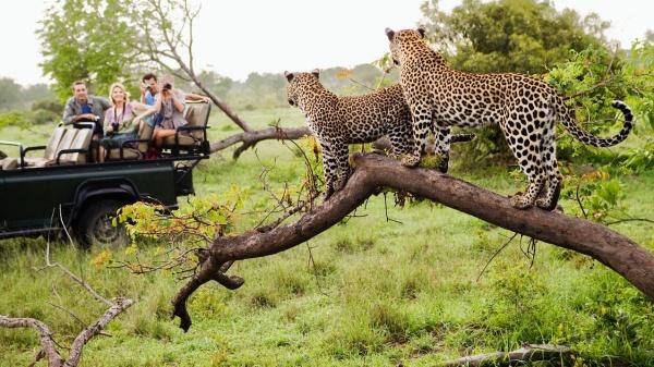 Замбия Могущество африканских стихий